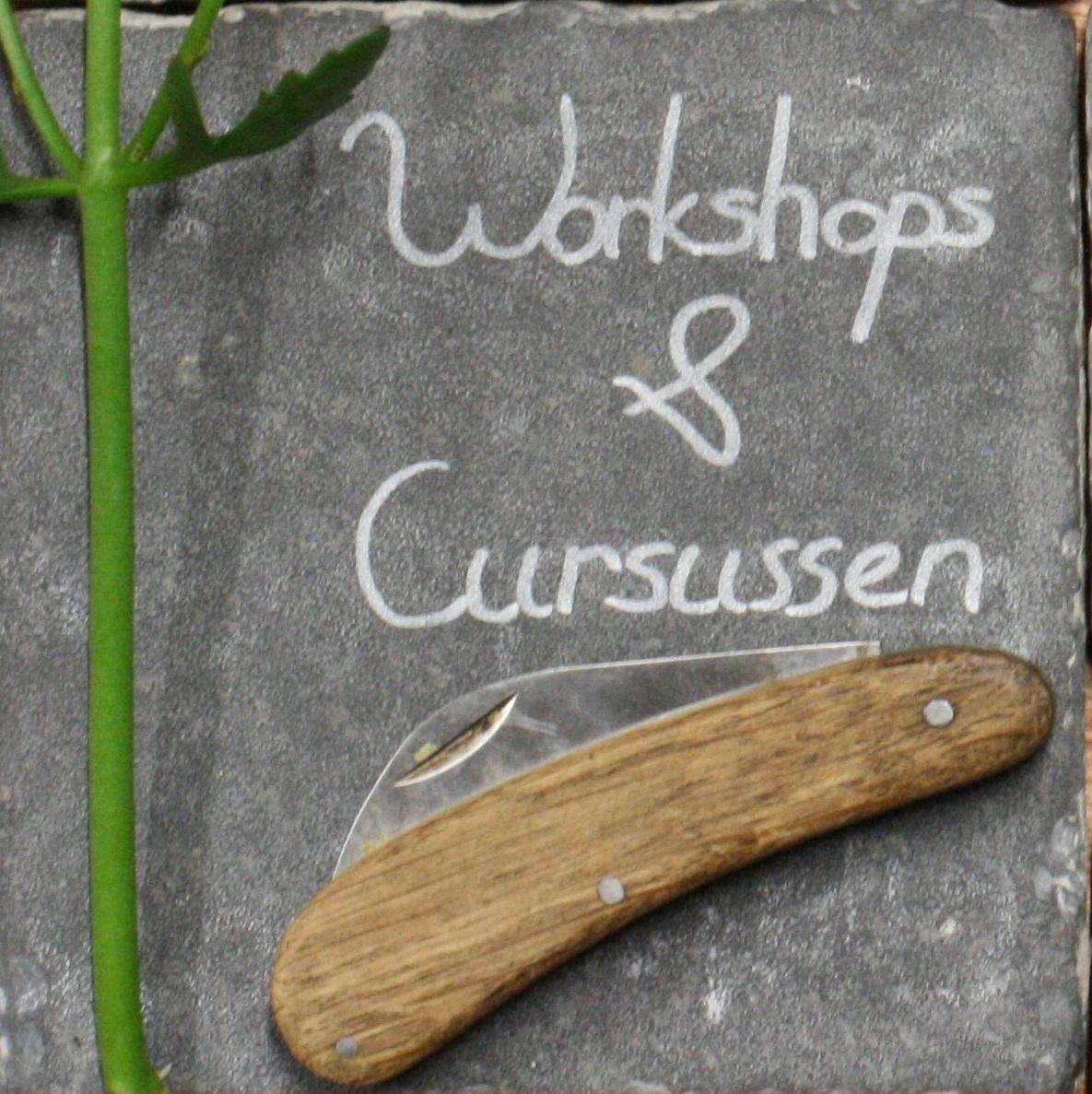 Workshops & Cursussen