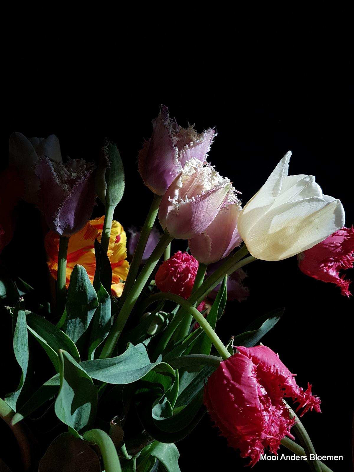Bloemabonnement: Tulpen en bosbes