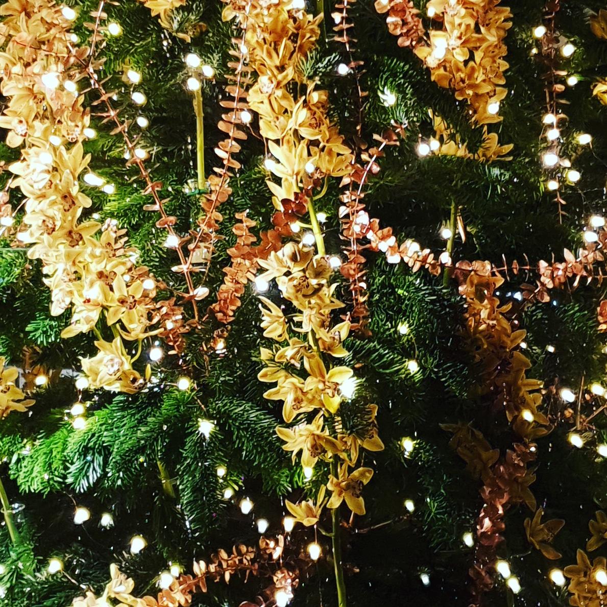 Kerst Workshops Staan online